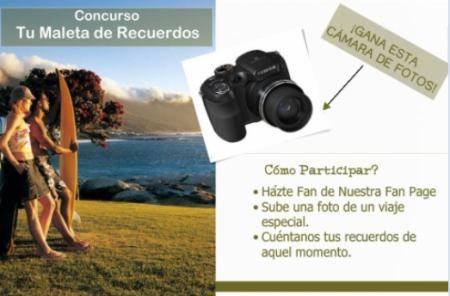 Promocion Hotels Hotels