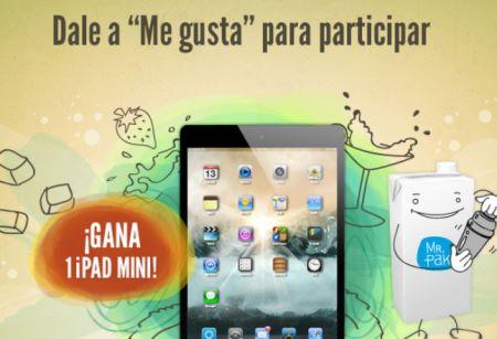 Sorteo de iPad mini gratis